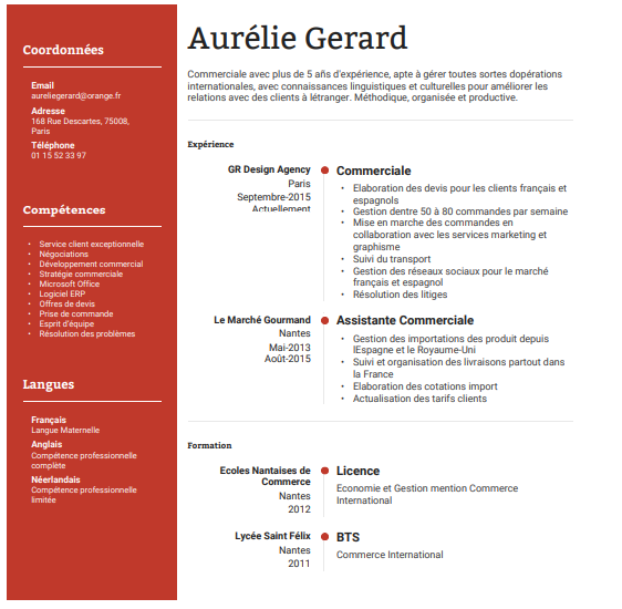 Example of french resume